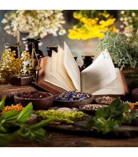 Warsztaty: Podręczna naturalna apteczka – czyli niezbędne olejki eteryczne w Twoim domu