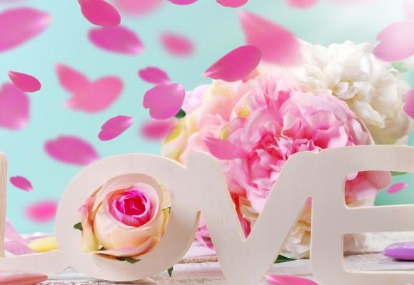 Kochaj przez cały rok!